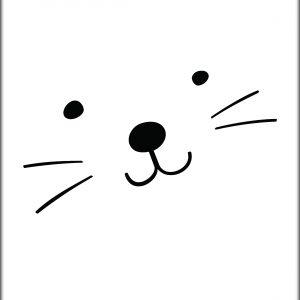 Ansichtkaart Catface