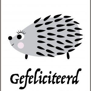 Postcard Egel 'Gefeliciteerd'