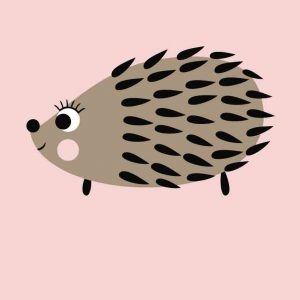 Postcard 'hedgehog'